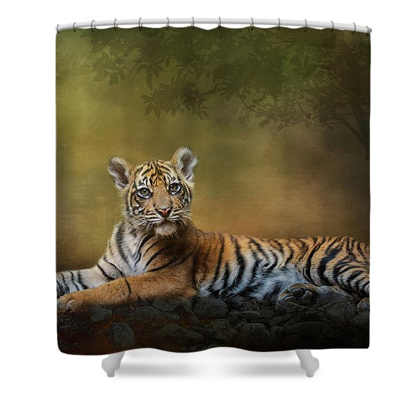 Practicing My Big Kitty Stare Shower Curtain