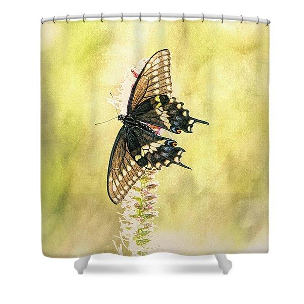 Prairie Butterfly 2 Shower Curtain