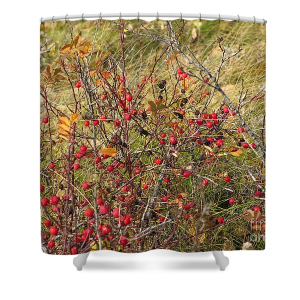 Prairie Rosehips Shower Curtain