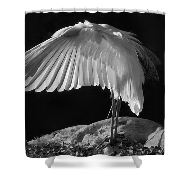 Preening Great Egret By H H Photography Of Florida Shower Curtain