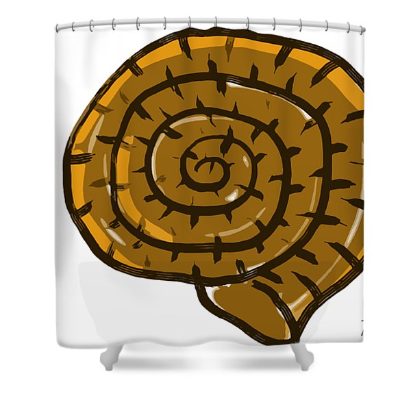 Prehistoric Shell Shower Curtain
