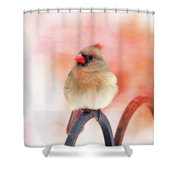 Pretty Cardinal Shower Curtain