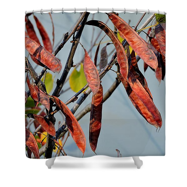 Pretty Pods Shower Curtain