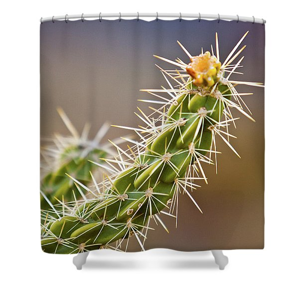 Prickly Branch Shower Curtain