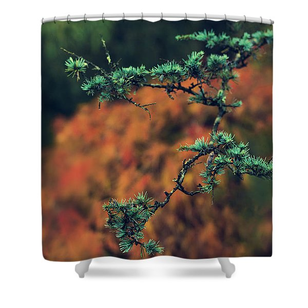 Prickly Green Shower Curtain