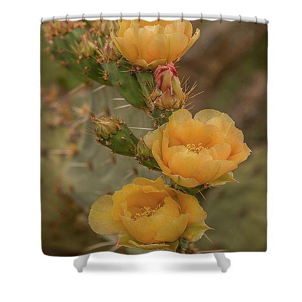 Prickly Pear Blossom Trio Shower Curtain