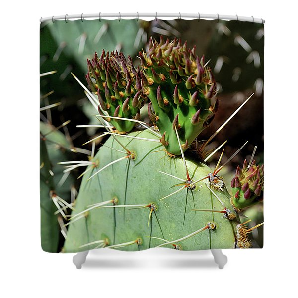 Prickly Pear Buds Shower Curtain
