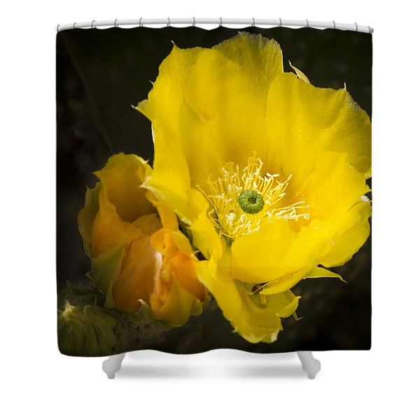 Prickly Pear Cactus Bloom Shower Curtain