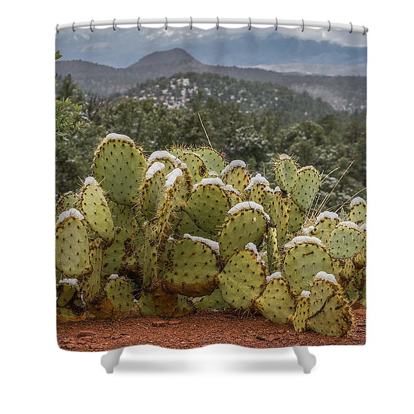 Cactus Country Shower Curtain