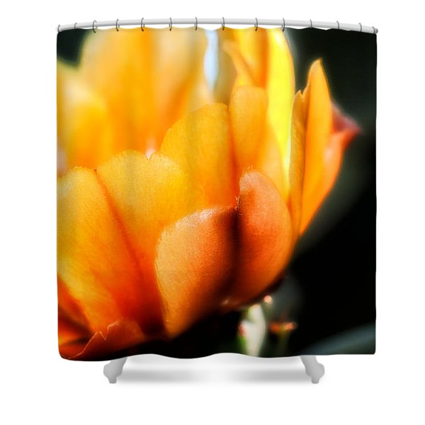 Prickly Pear Flower Shower Curtain