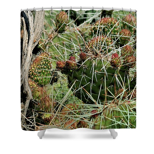 Prickly Pear Revival Shower Curtain