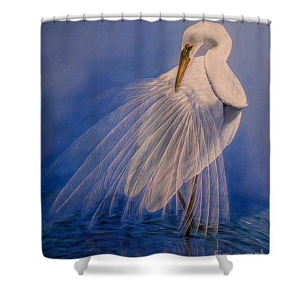 Princess Of The Mist Shower Curtain