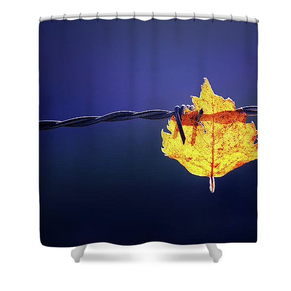 Prisioner Shower Curtain