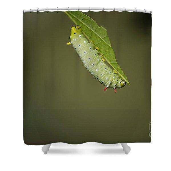 Promethea Shower Curtain