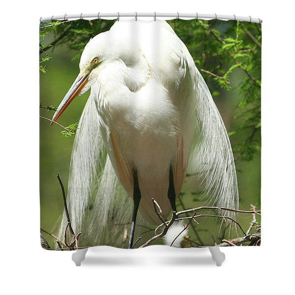 Protecting Shower Curtain