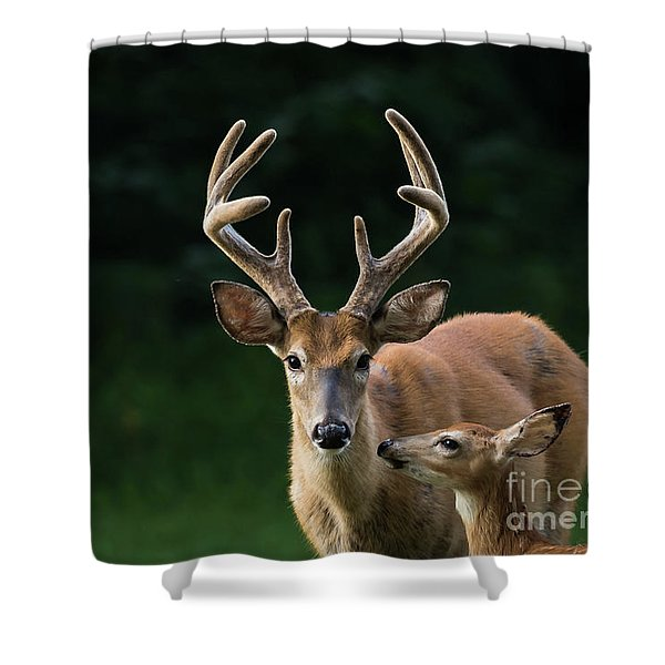Shower Curtain featuring the photograph Protective Dad by Andrea Silies