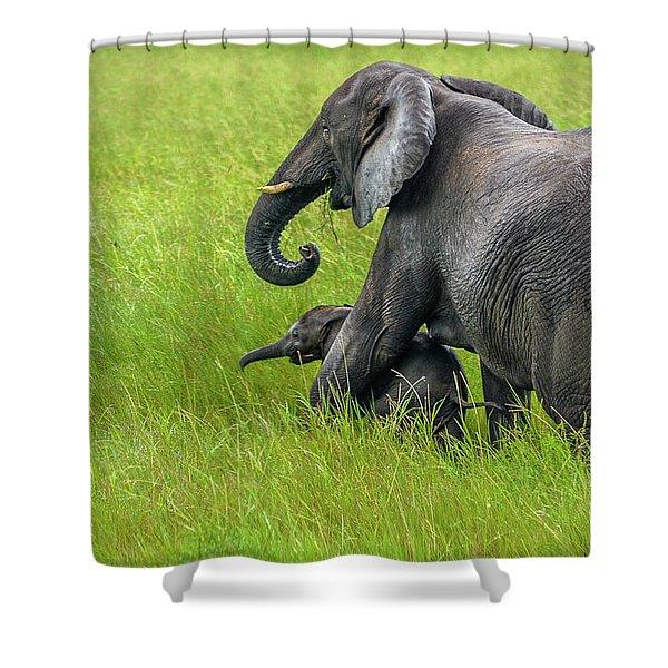 Protective Elephant Mom Shower Curtain