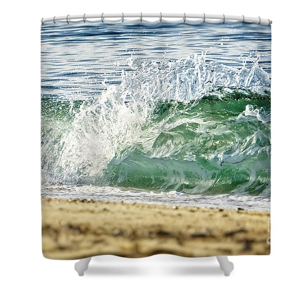 Provincetown Iv Shower Curtain