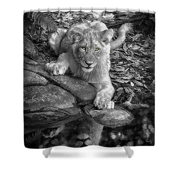 Prowler Reflection Shower Curtain