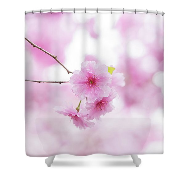 Prunus Pink Ballerina Shower Curtain
