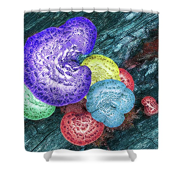 Psychedelic Mushrooms Shower Curtain