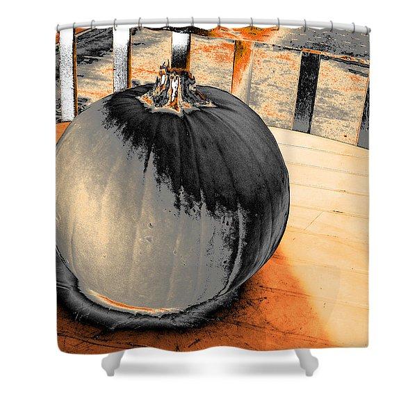 Pumpkin #2 Shower Curtain