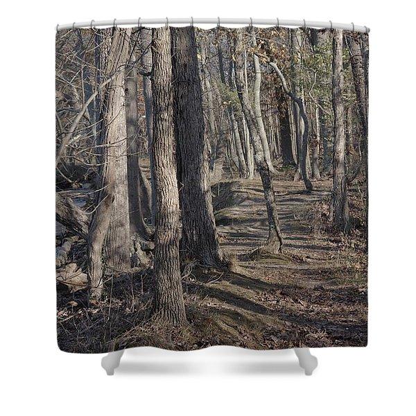 Pumpkin Ash Trail Shower Curtain