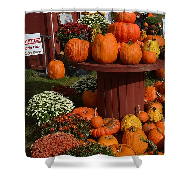 Pumpkin Display Shower Curtain