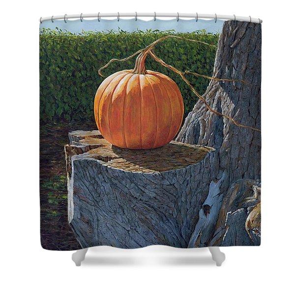 Pumpkin On A Dead Willow Shower Curtain