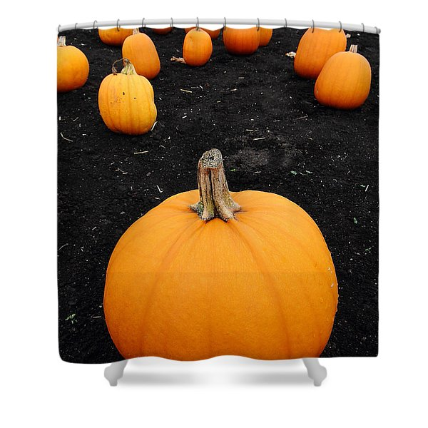 Pumpkin Patch 5 Shower Curtain