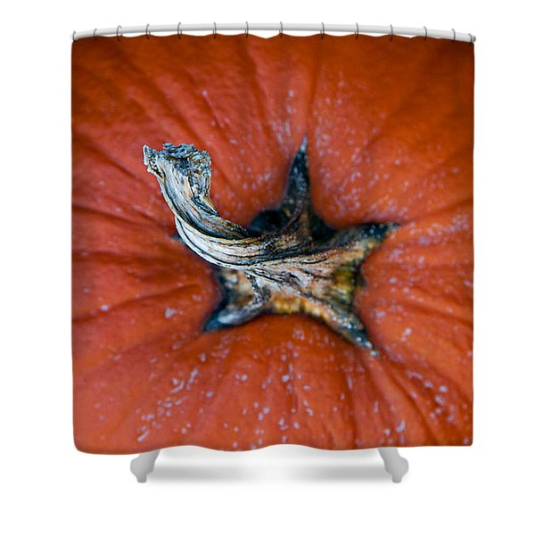 Pumpkin Stalk Shower Curtain