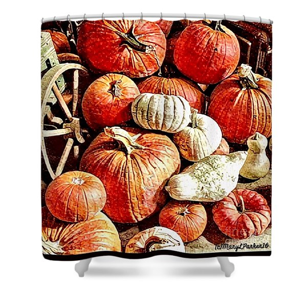 Pumpkins In The Barn Shower Curtain