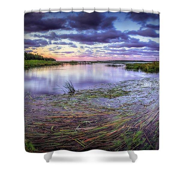 Purple Bay Shower Curtain