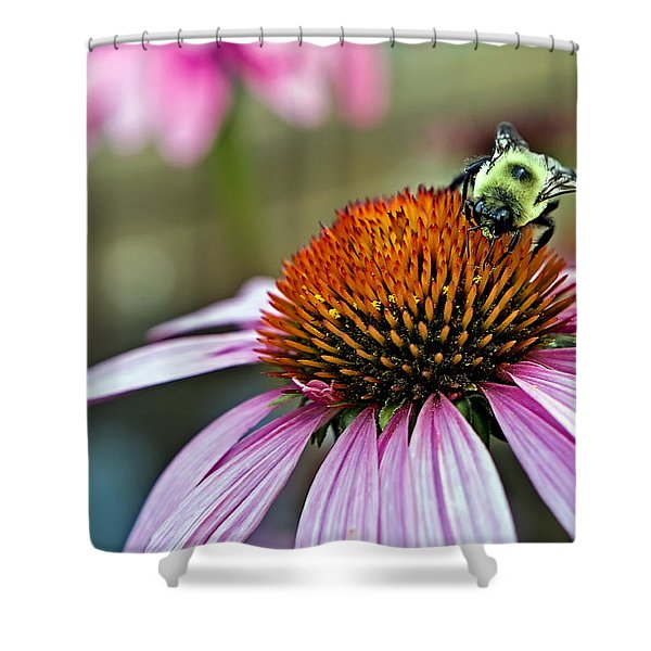 Purple Cone Flower And Bee Shower Curtain