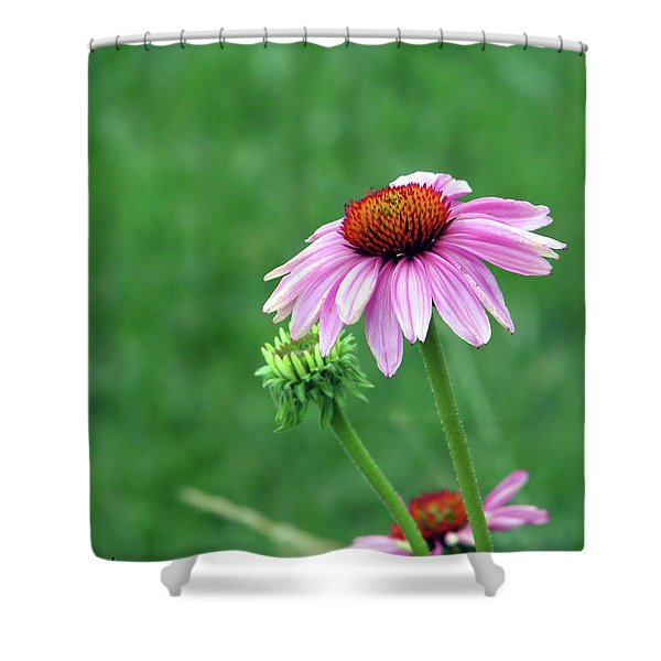 Purple Cone Shower Curtain