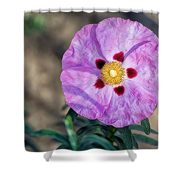 Purple Rockrose Shower Curtain