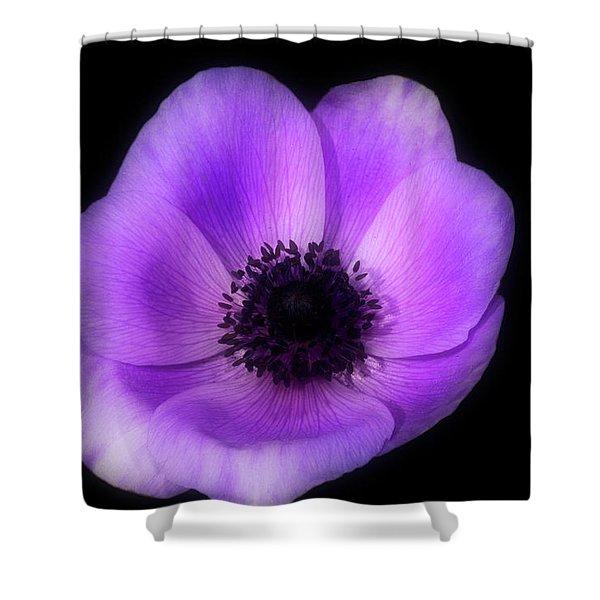Purple Flower Head Shower Curtain