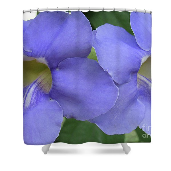 Purple Flower Picture Perfect Shower Curtain