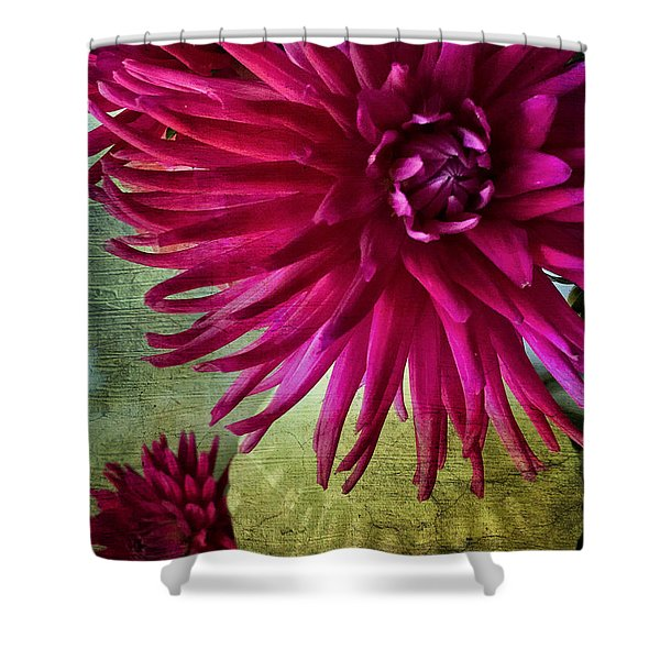 Rai Of Light Shower Curtain