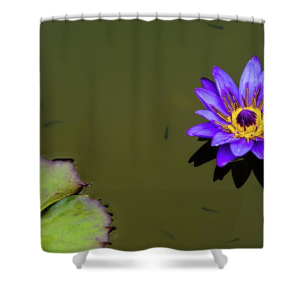 Purple Lily With Tiny Fish Shower Curtain