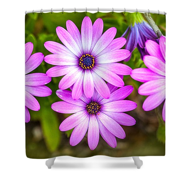 Purple Pals Shower Curtain