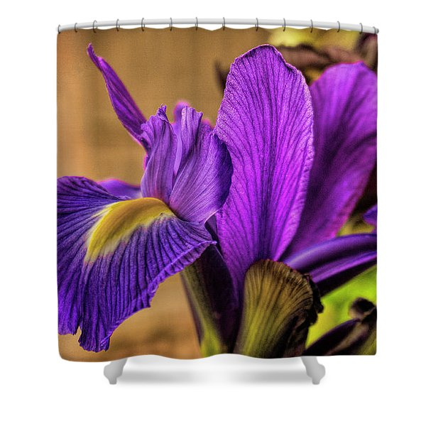 Purple People Eater Shower Curtain