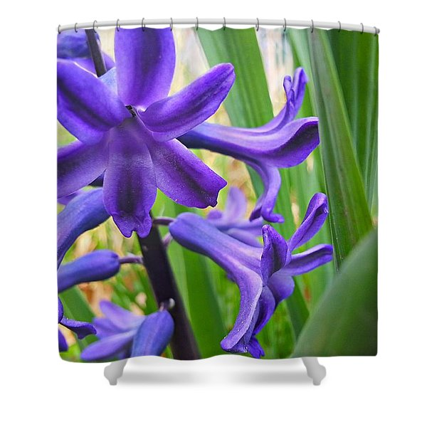 Purple Spring Shower Curtain