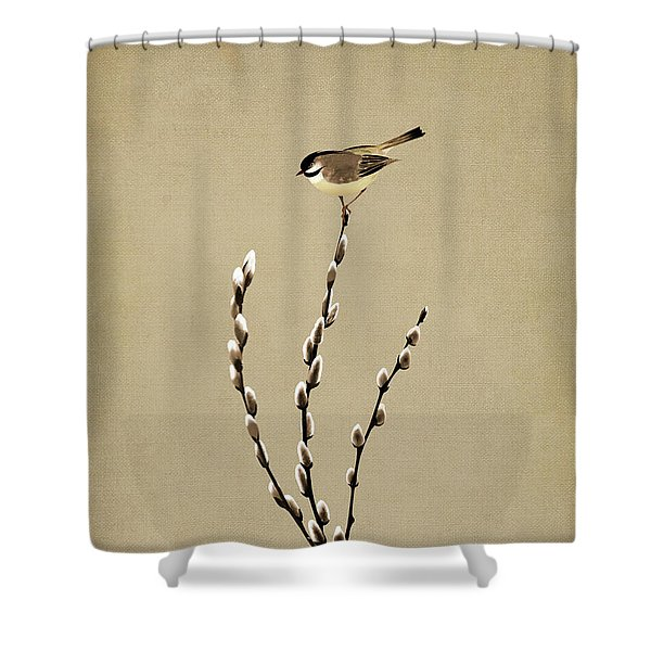 Pussy Willow And Chickadee Shower Curtain