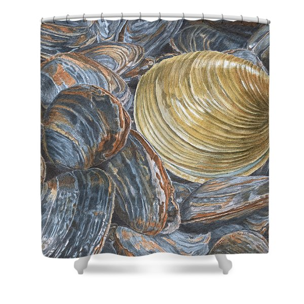 Quahog On Clams Shower Curtain