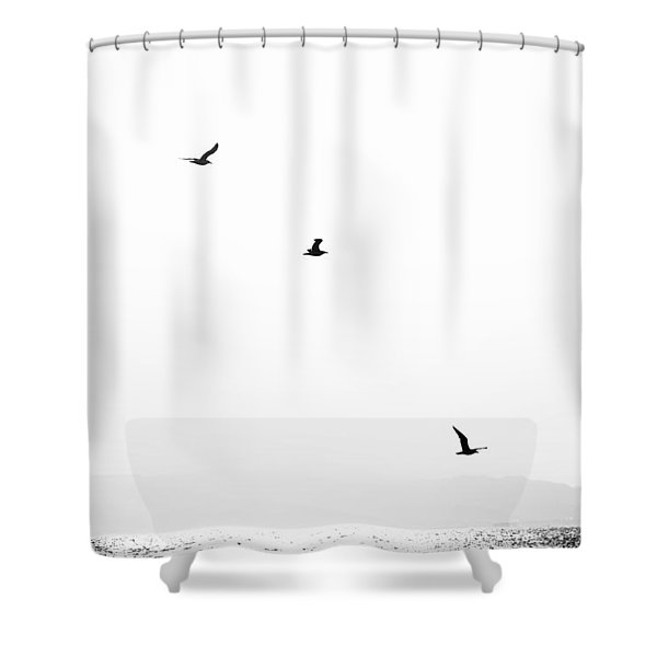 Quartet Shower Curtain