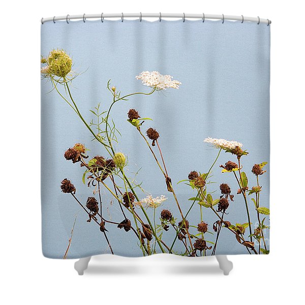 Queen Anne's Lace And Dried Clovers Shower Curtain