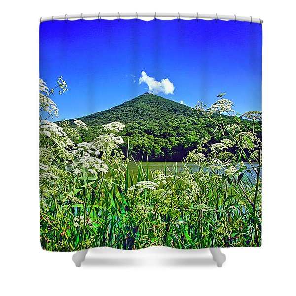 Queen Anne's Lace, Peaks Of Otter  Shower Curtain