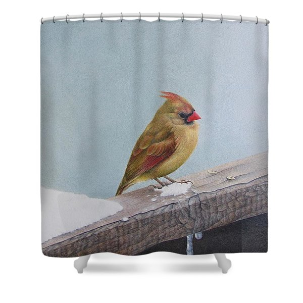 Queen Of State Shower Curtain