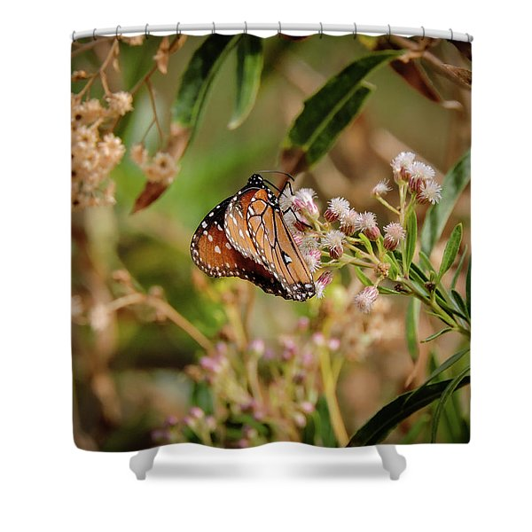 Queen Of The Hassayampa Shower Curtain